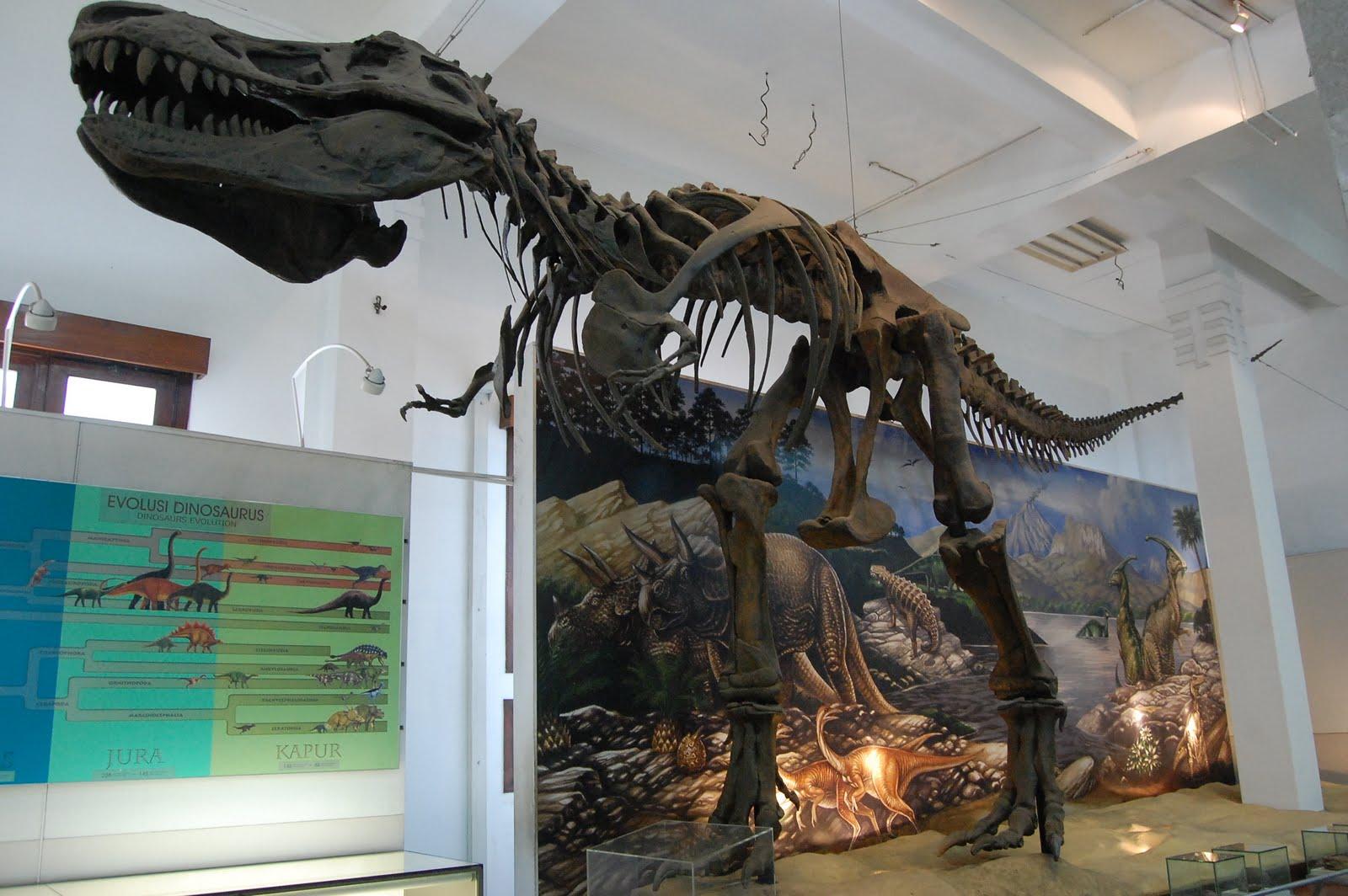 Bandung Geological Museum di Bandung